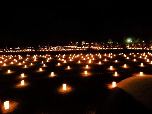 奈良燈花会 (6)・浮雲園地