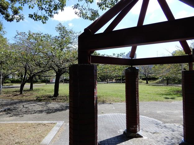 桜之宮公園(蕪村公園) (1)