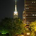 写真: 福岡タワー