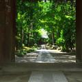 Photos: 寿福寺参道