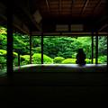 写真: 夏の詩仙堂