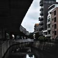 神田川と首都高