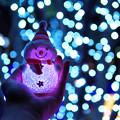 写真: Merry Christmas, Mr. Snowman