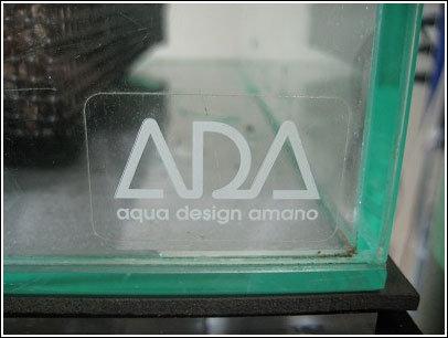 初ADA!