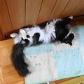 Photos: 疲れたぁー!