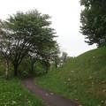 Photos: 散歩コース