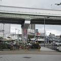 Photos: 野田