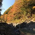 写真: 鳩ノ巣渓谷