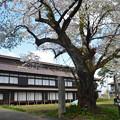 写真: 170422松ヶ岡開墾場 開墾記念館