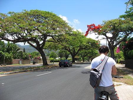 2009年ハワイ旅行 〜 自転車でKCC⇒カハラモール 〜