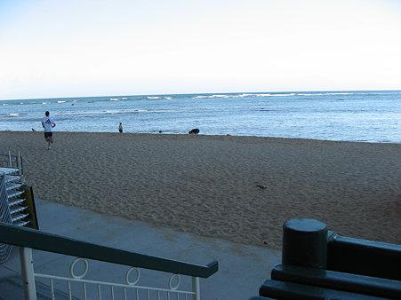 2009年ハワイ旅行〜朝の散歩コース・ショアからヒルトンラグーン1周〜