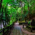 写真: 天石門別神社