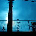 Photos: オーラのある電柱[Polaroid a520]