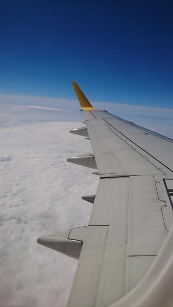 写真: 空から