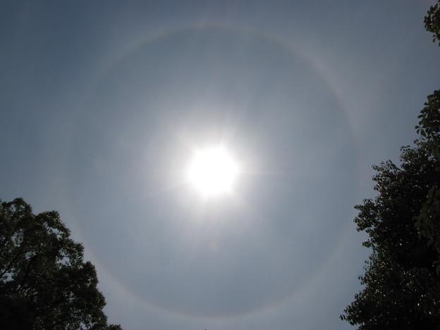 ★太陽にリング!!