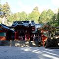 写真: 箱根神社