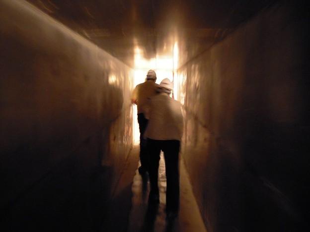 写真: 大回廊s