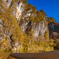 写真: 11月的猊鼻溪
