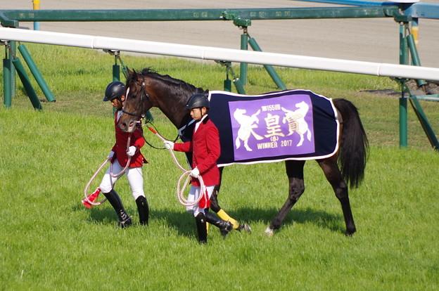 キタサンブラック 天皇賞の馬服が良く似合う