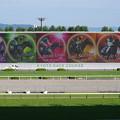 Photos: 春のG1を制した5頭の優駿