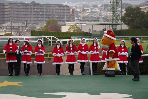 ターフィーに呼ばれた美女サンタ軍団
