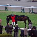 キタサンブラック 引退式様の馬服へ