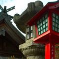 写真: 針網神社
