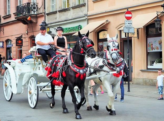 観光馬車 Carriage ride