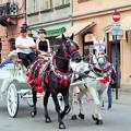 写真: 観光馬車 Carriage ride