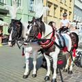 Photos: 観光馬車 Carriage ride