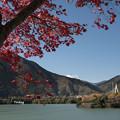 写真: 丹沢湖の晩秋
