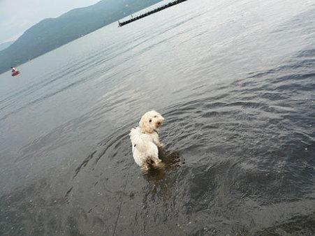 くーかい 山中湖を楽しむ2
