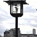 Photos: 旧東海道 品川橋近くの街灯