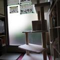 Photos: 諭吉ルーム