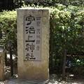 写真: 宇治上神社