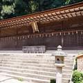 写真: 宇治上神社 本殿