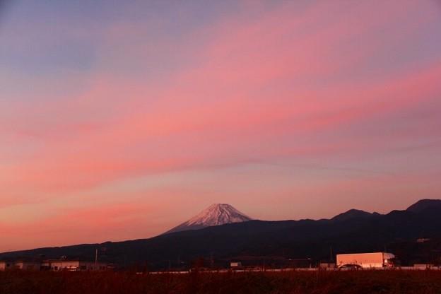 1月16日沼津市原からの夕方富士山~ 焼けたね!