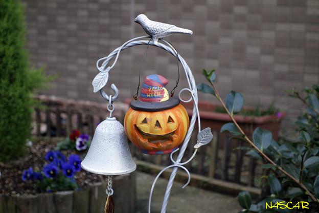写真: Halloween 03112017