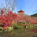 Photos: 京都/ 清水寺