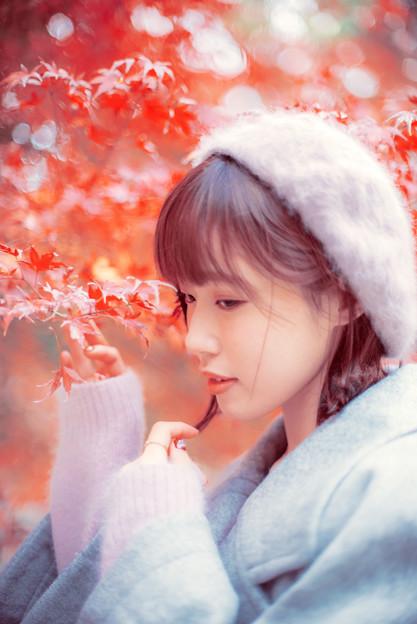 写真: ロマンティックな紅