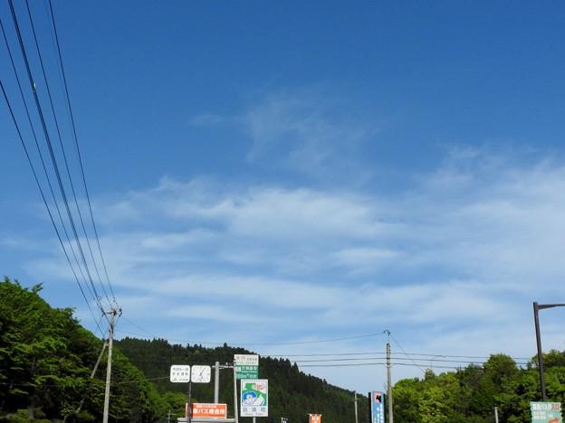 Photos: 鳳凰と龍