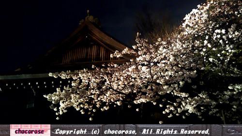 写真: 靖国神社の能舞台