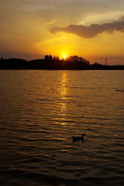陽が沈む頃