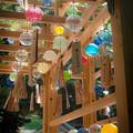 Photos: 風鈴市2@川越氷川神社