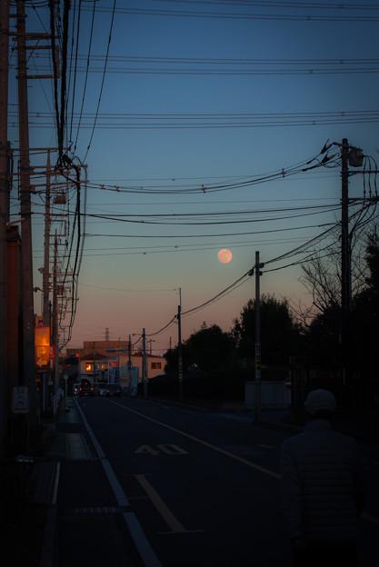 写真: 2018・初月の出@近所