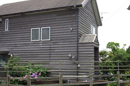 2009.06.13 稲村ヶ崎 紫陽花