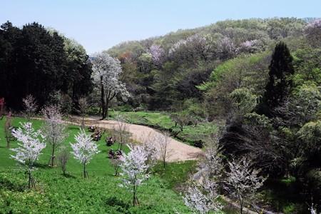 2017.04.14 里山ガーデン 新緑芽吹く里山