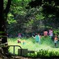 写真: 2017.04.19 瀬谷市民の森 花畑