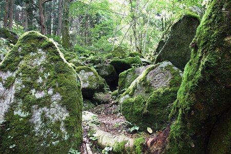 2009.08.12 遠野 自然石へ五百羅漢
