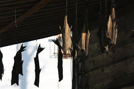 2009.08.14 笹川流れ 干し魚